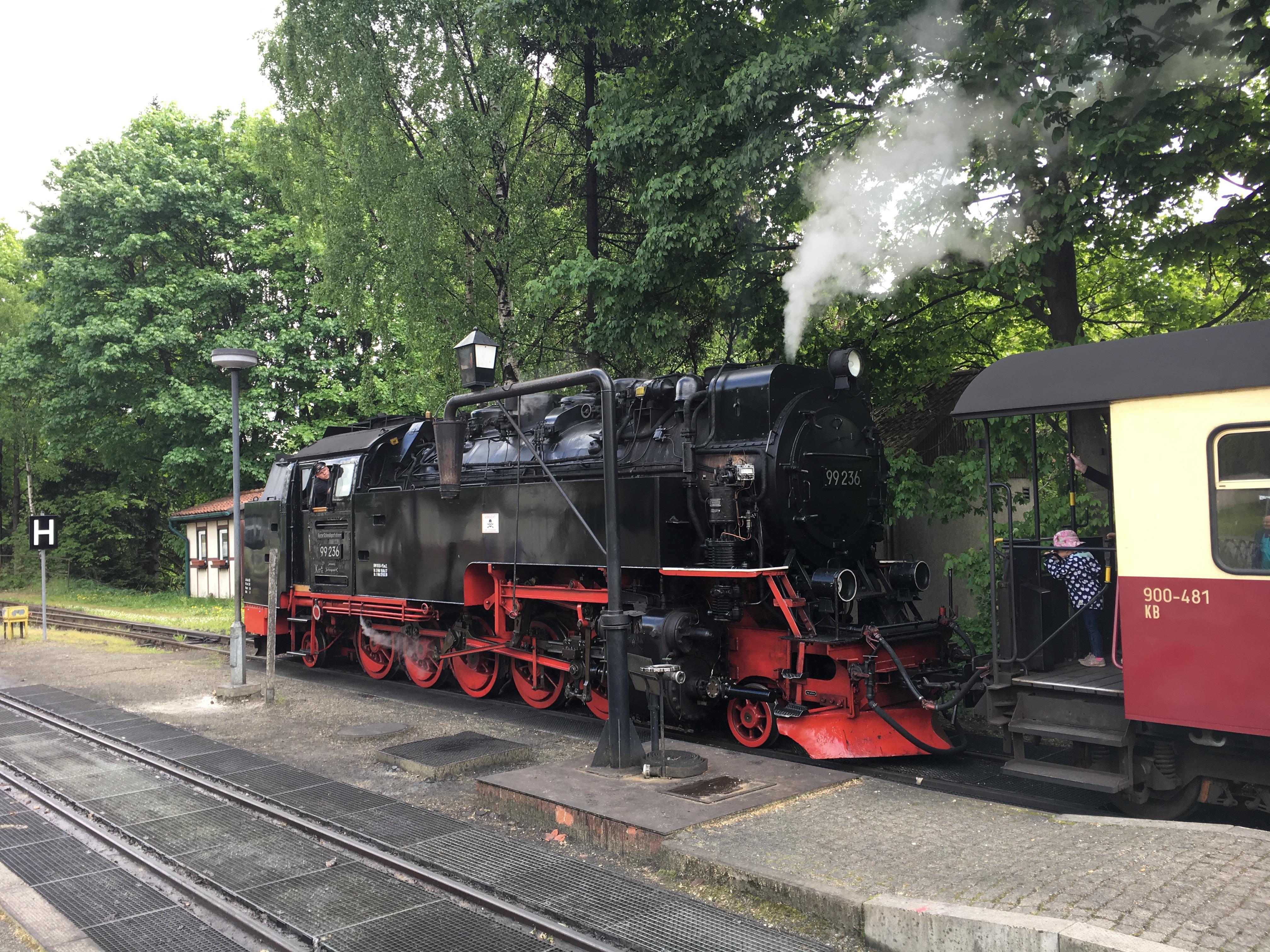 Stoomtrein Wernigerode